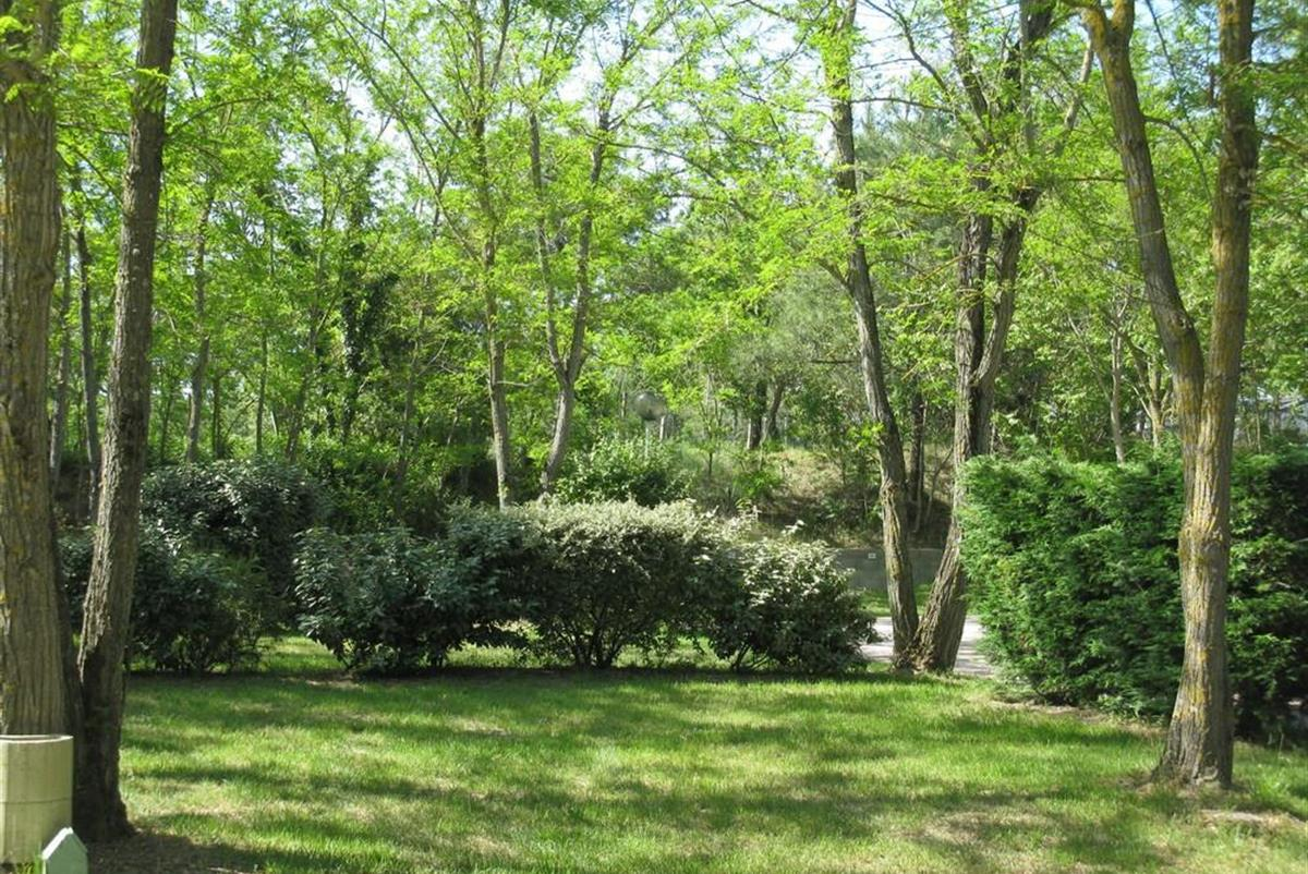 Offres Speciales Camping Marennes Reduction Adherent